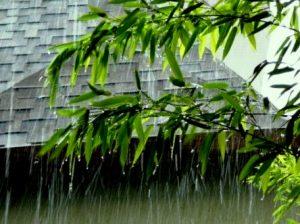 Дождь на отдыхе
